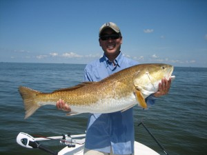 Big redfish 2