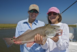 The Wood's Redfish
