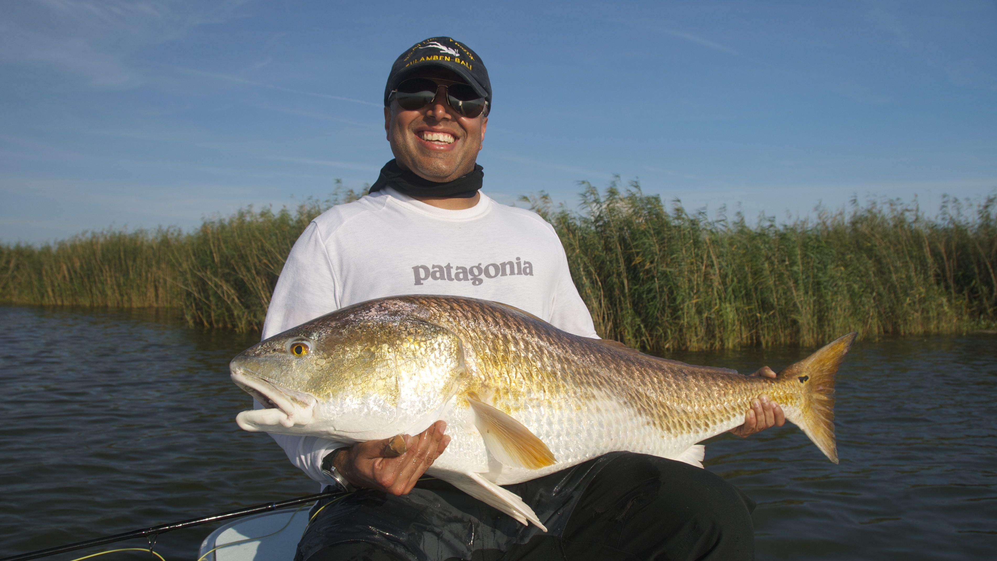 Recent big redfish caught on fly shallow south for Redfish fly fishing