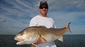 Fly fishing for Louisiana redfish