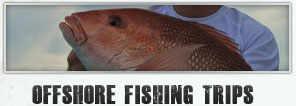 Offshore Fishing Trips