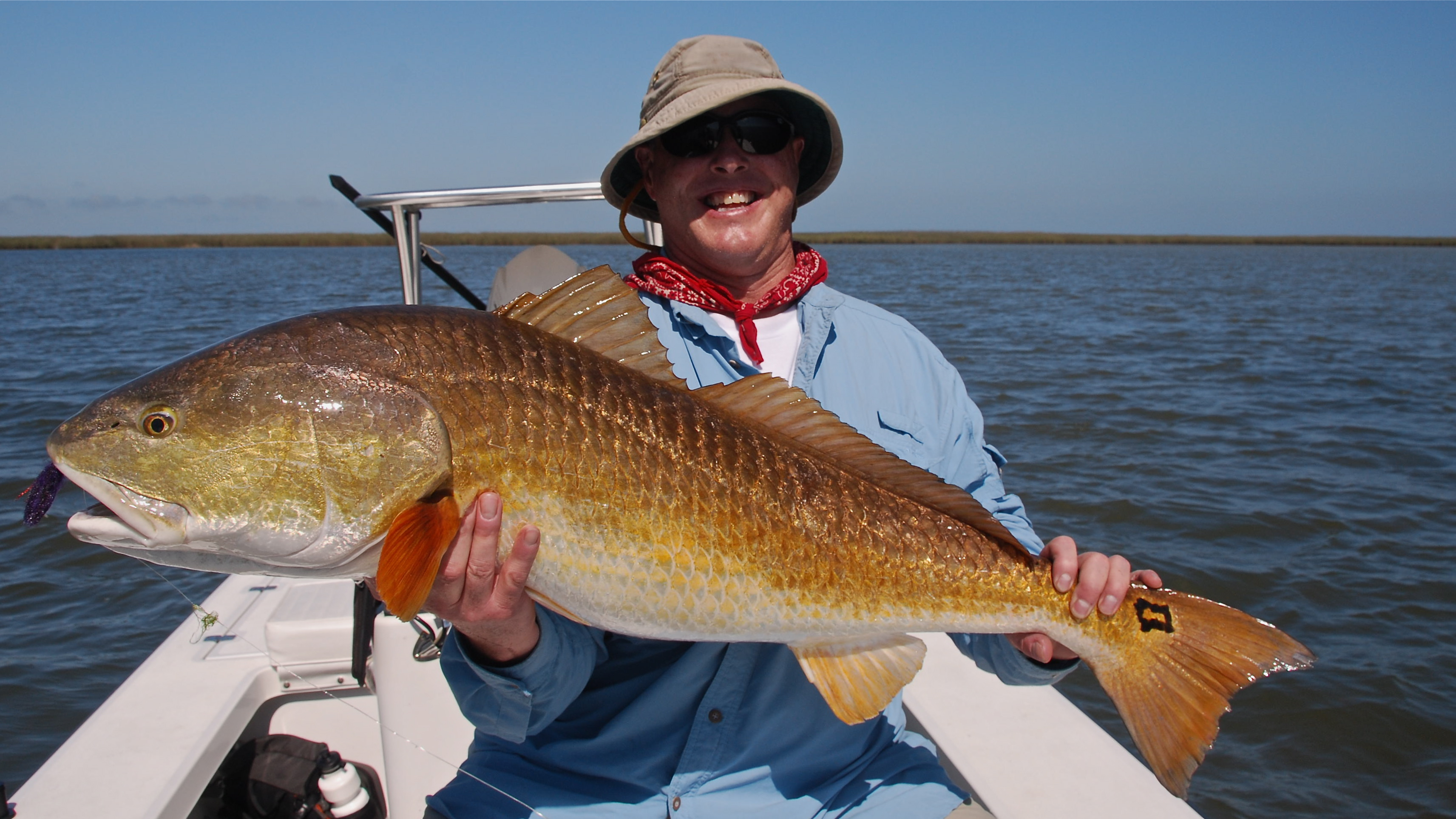 Late season big redfish shallow south for How to fish for redfish