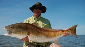 Late Season Big Redfish