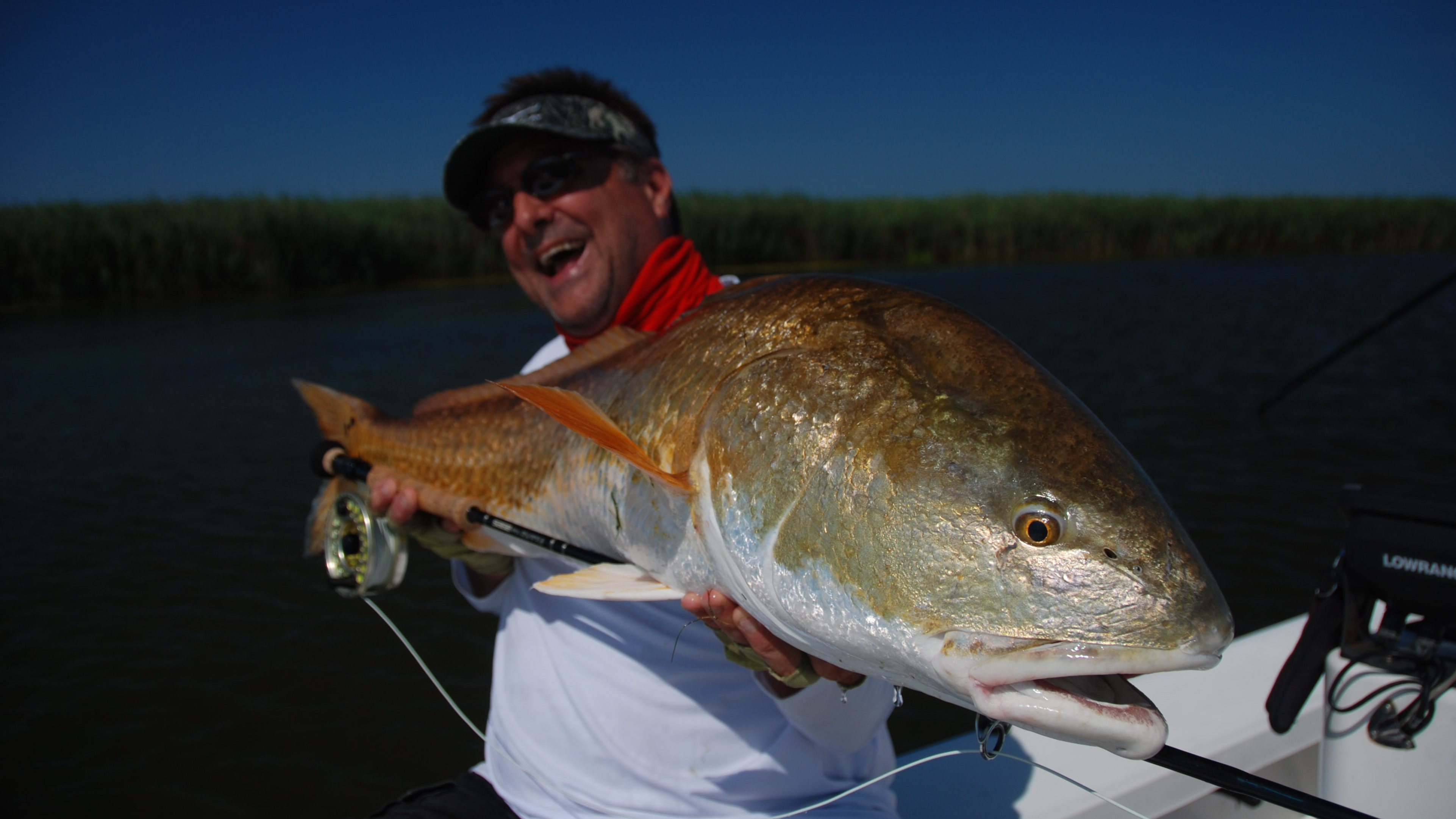 Redfish topwater popping in the shade shallow south for Louisiana redfish fly fishing