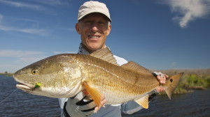 Nice Spring Redfish