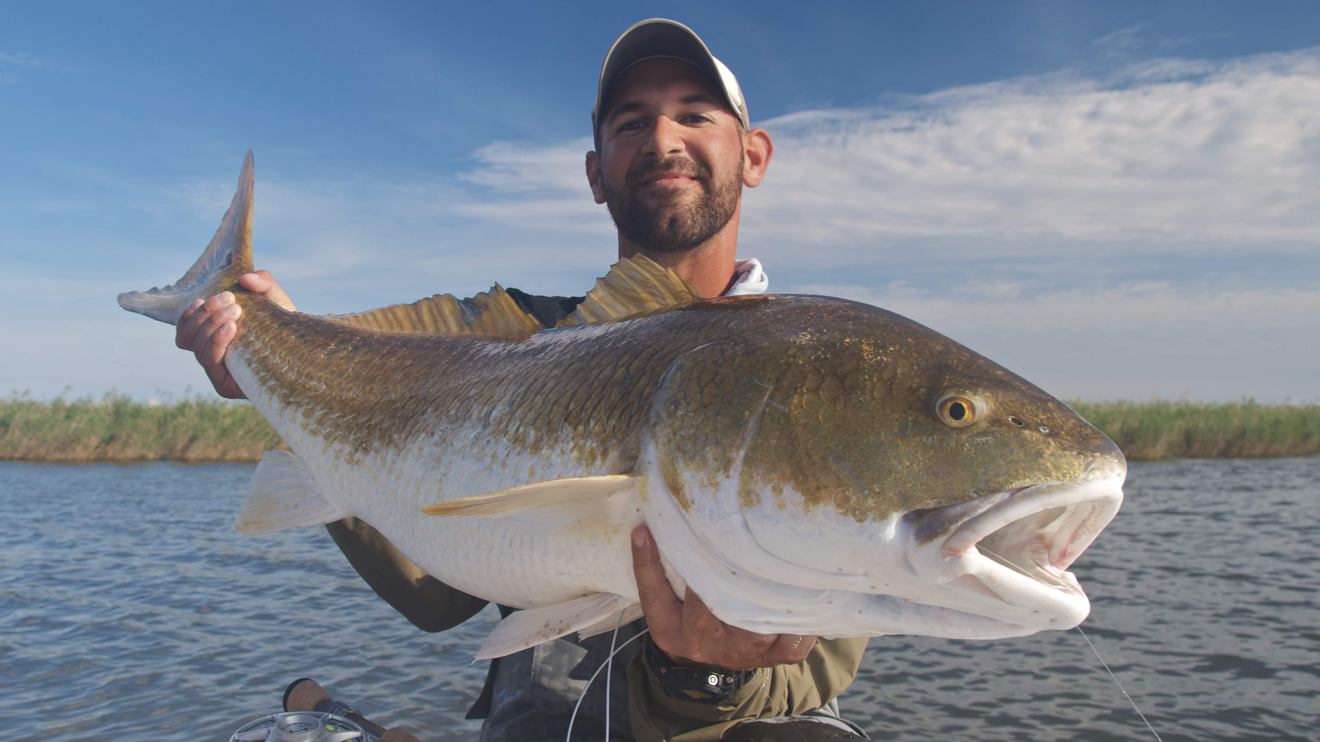 Big fish season is in full swing shallow south for Red fish season