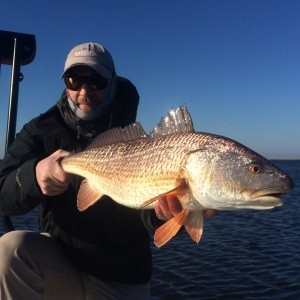 Fly fishing for Little Redfish to Save the Day!