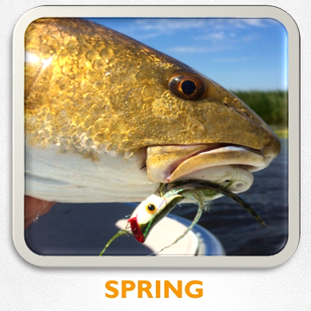 louisiana spring flyfishing