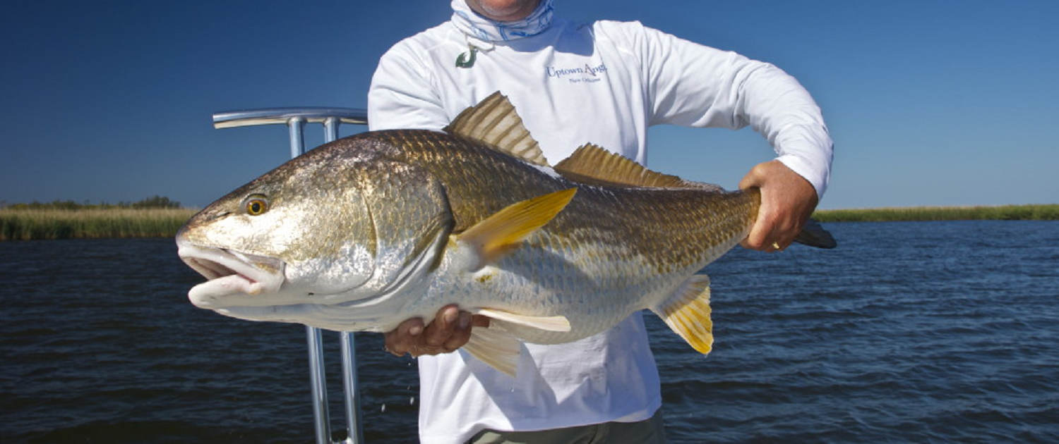 winter redfishing louisiana